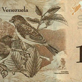 100 Bolivares 2015 UNC