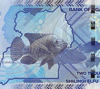 2000 Shilling 2017 UNC